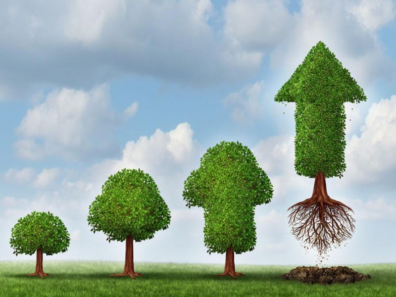 佛山陶博会丨营收保持20%增速的家居大咖,都有三个共同特征